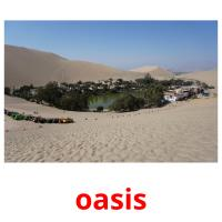 oasis picture flashcards