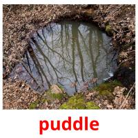 puddle picture flashcards