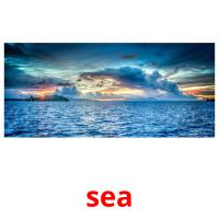 sea picture flashcards