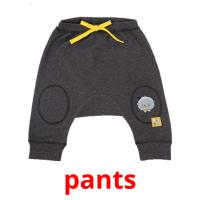 pants picture flashcards