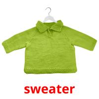 sweater picture flashcards