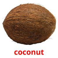 coconut picture flashcards