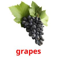 grapes picture flashcards