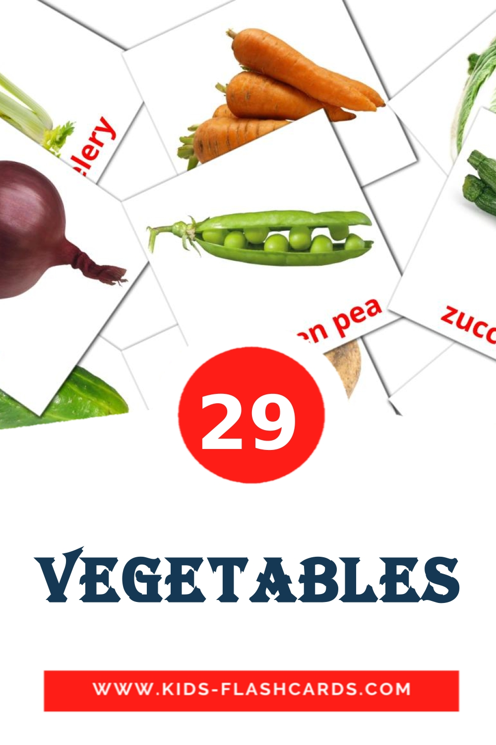 29 Vegetables Picture Cards for Kindergarden in english