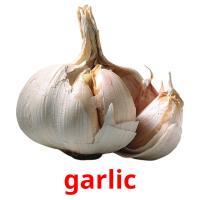 garlic picture flashcards