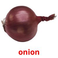 onion picture flashcards
