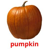 pumpkin picture flashcards