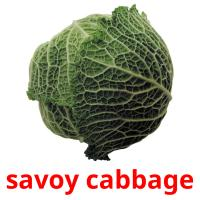 savoy cabbage picture flashcards