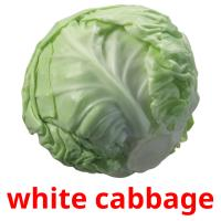 white cabbage card for translate