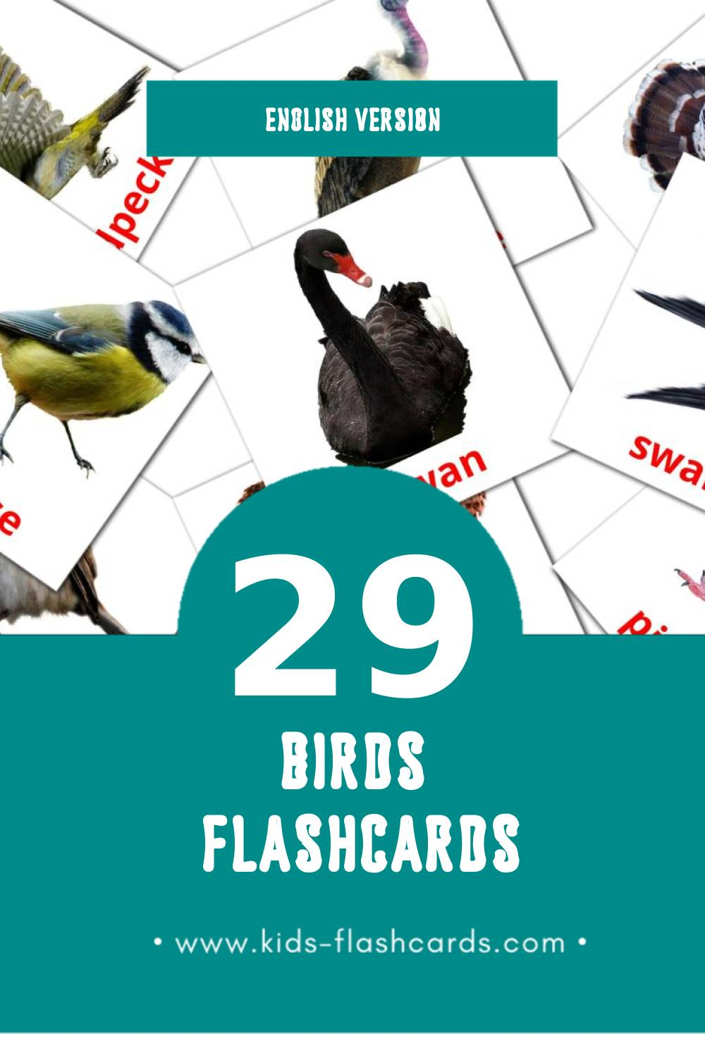 Visual Birds Flashcards for Toddlers (29 cards in English)