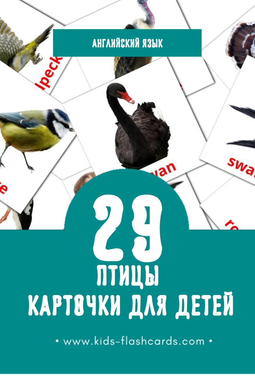 """""""Birds"""" - Визуальный Английском Словарь для Малышей (29 картинок)"""