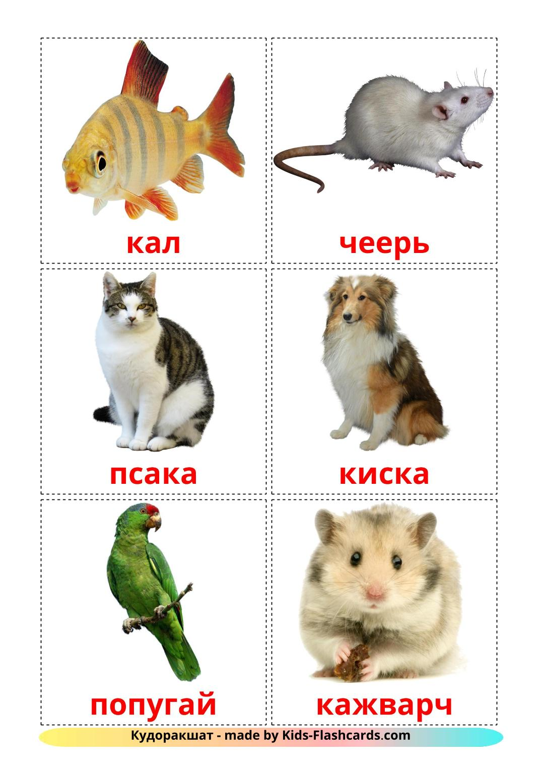 Domestic animals - 10 Free Printable erzya Flashcards