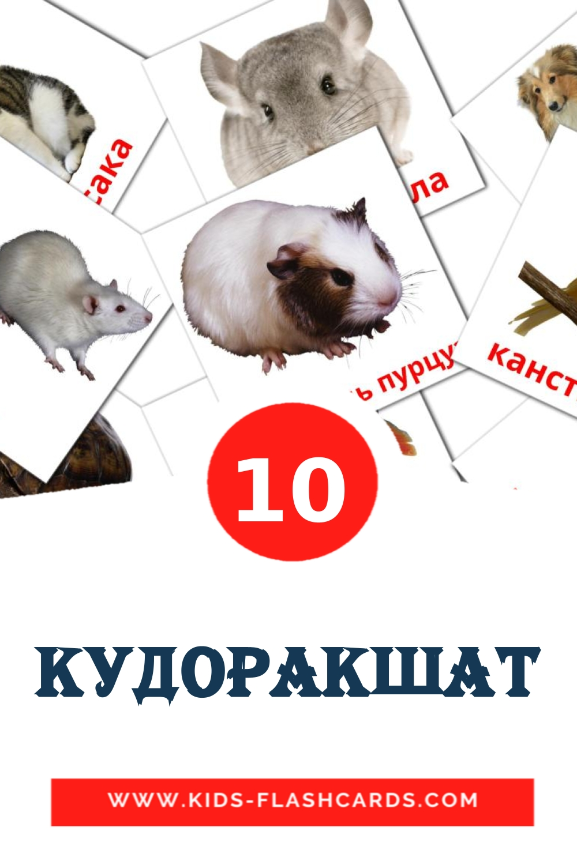 10 Кудоракшат Picture Cards for Kindergarden in erzya