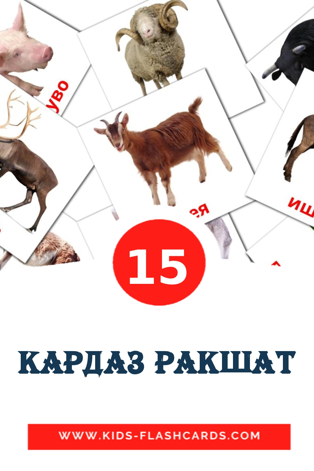 15 Кардаз ракшат Picture Cards for Kindergarden in erzya