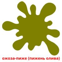 ожоза-пиже (пижень олива) picture flashcards