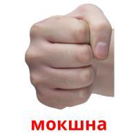 мокшна picture flashcards