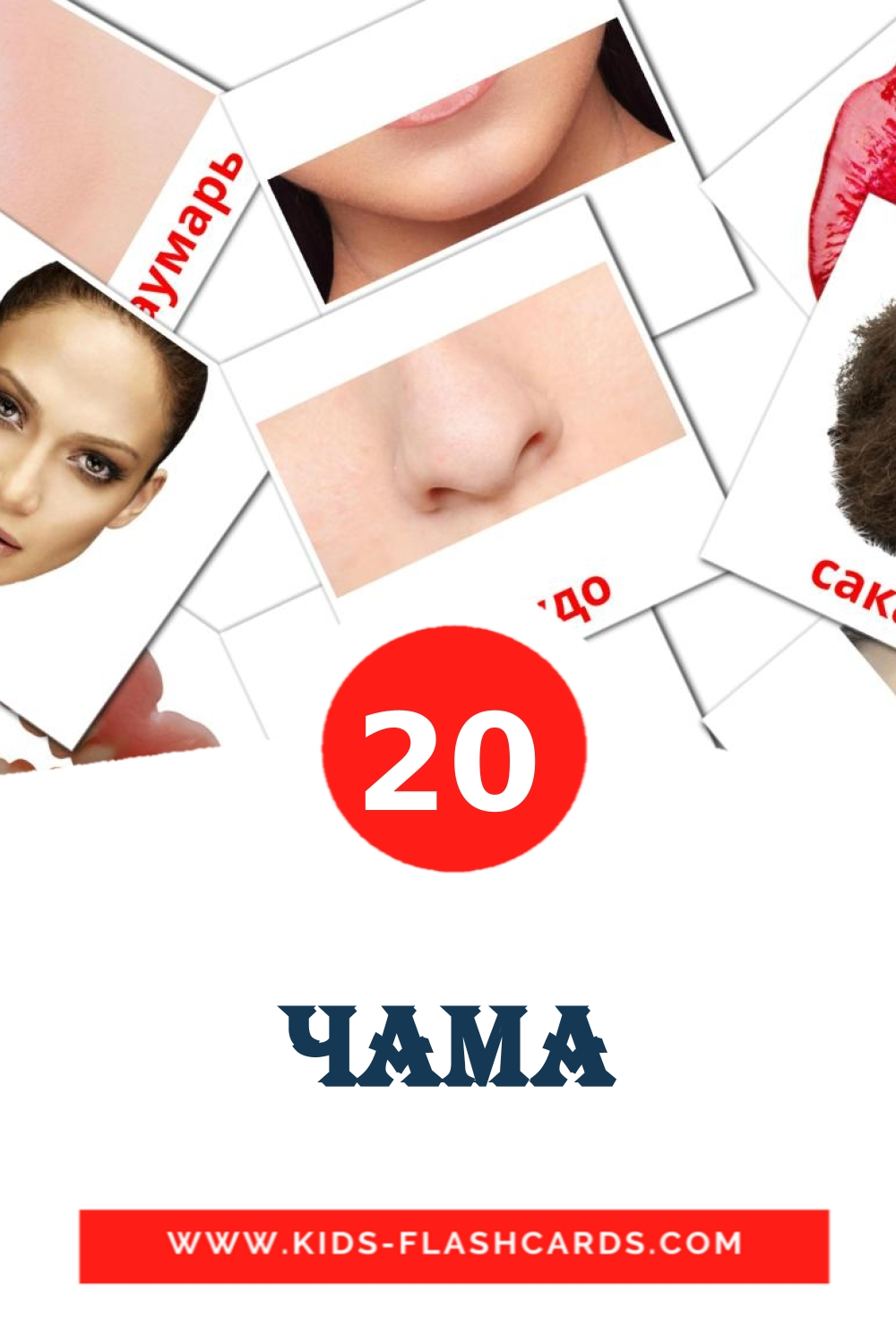 20 Чама Picture Cards for Kindergarden in erzya