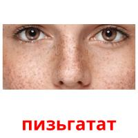 пизьгатат picture flashcards