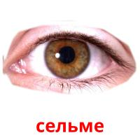 сельме picture flashcards