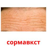 сормавкст picture flashcards