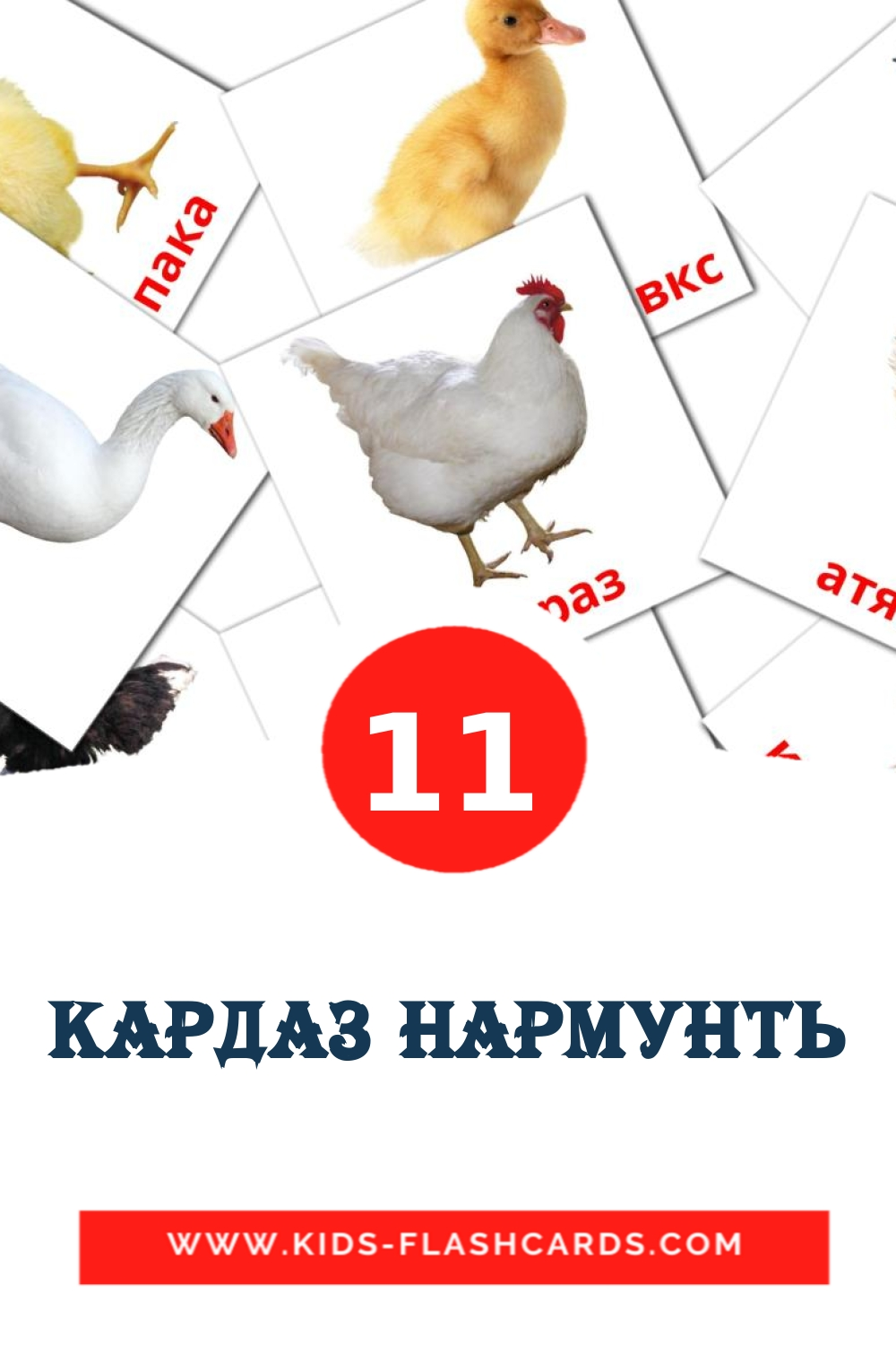 11 Кардаз нармунть Picture Cards for Kindergarden in erzya