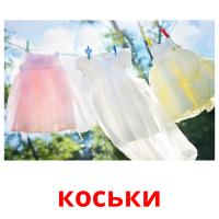 коськи picture flashcards