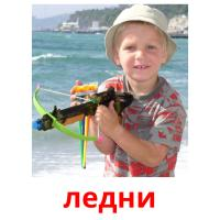 ледни picture flashcards