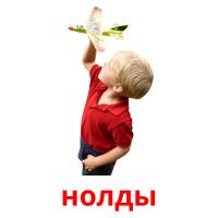 нолды picture flashcards