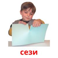 сези picture flashcards