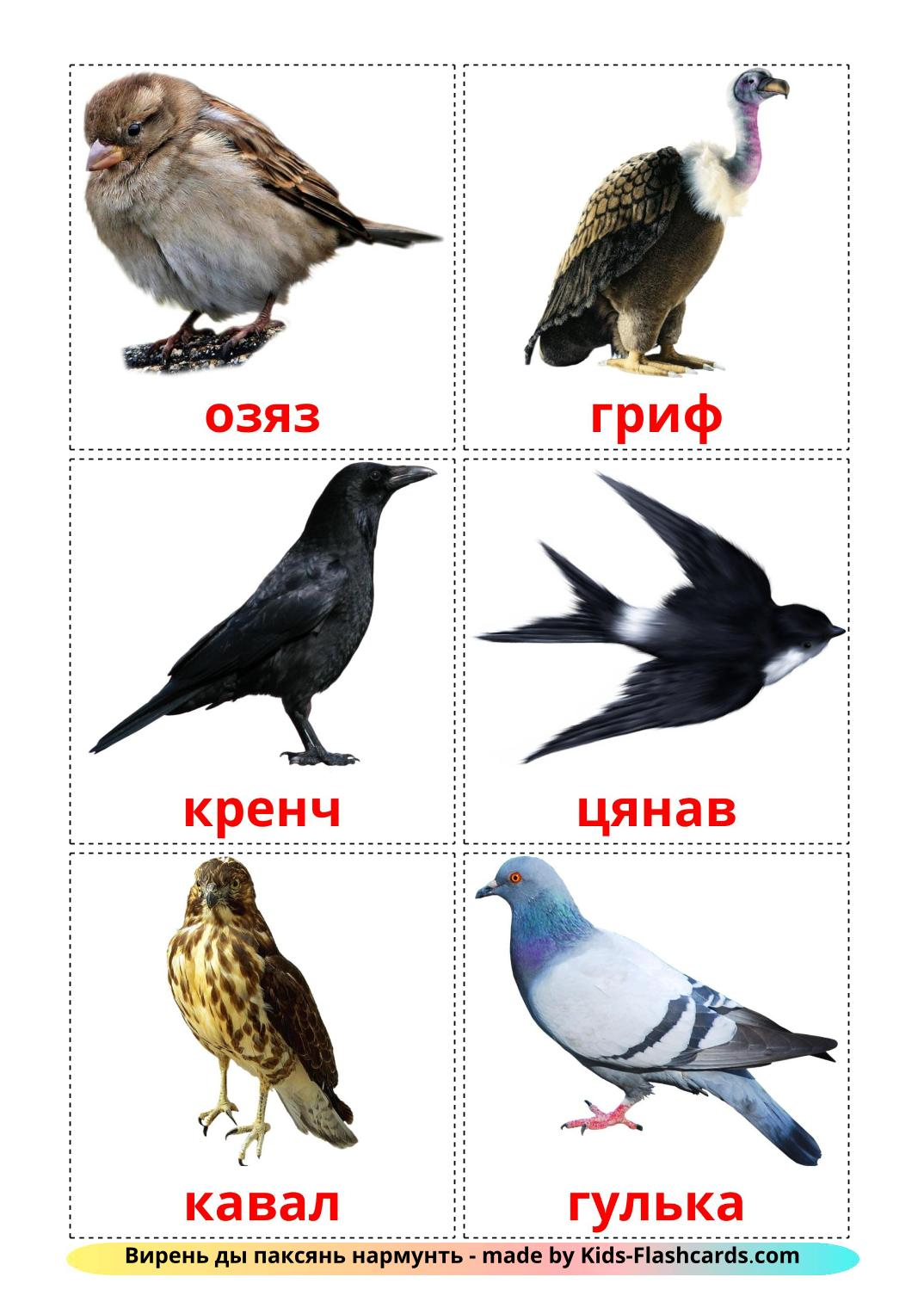 Wild birds - 18 Free Printable erzya Flashcards