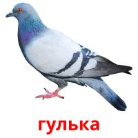 гулька picture flashcards