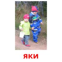 яки picture flashcards
