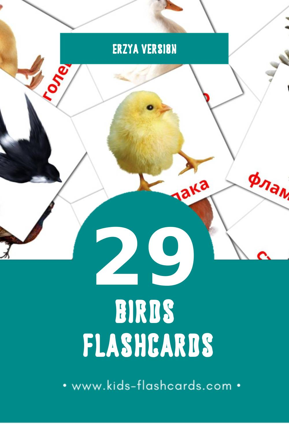 Visual Нармунть Flashcards for Toddlers (29 cards in Erzya)