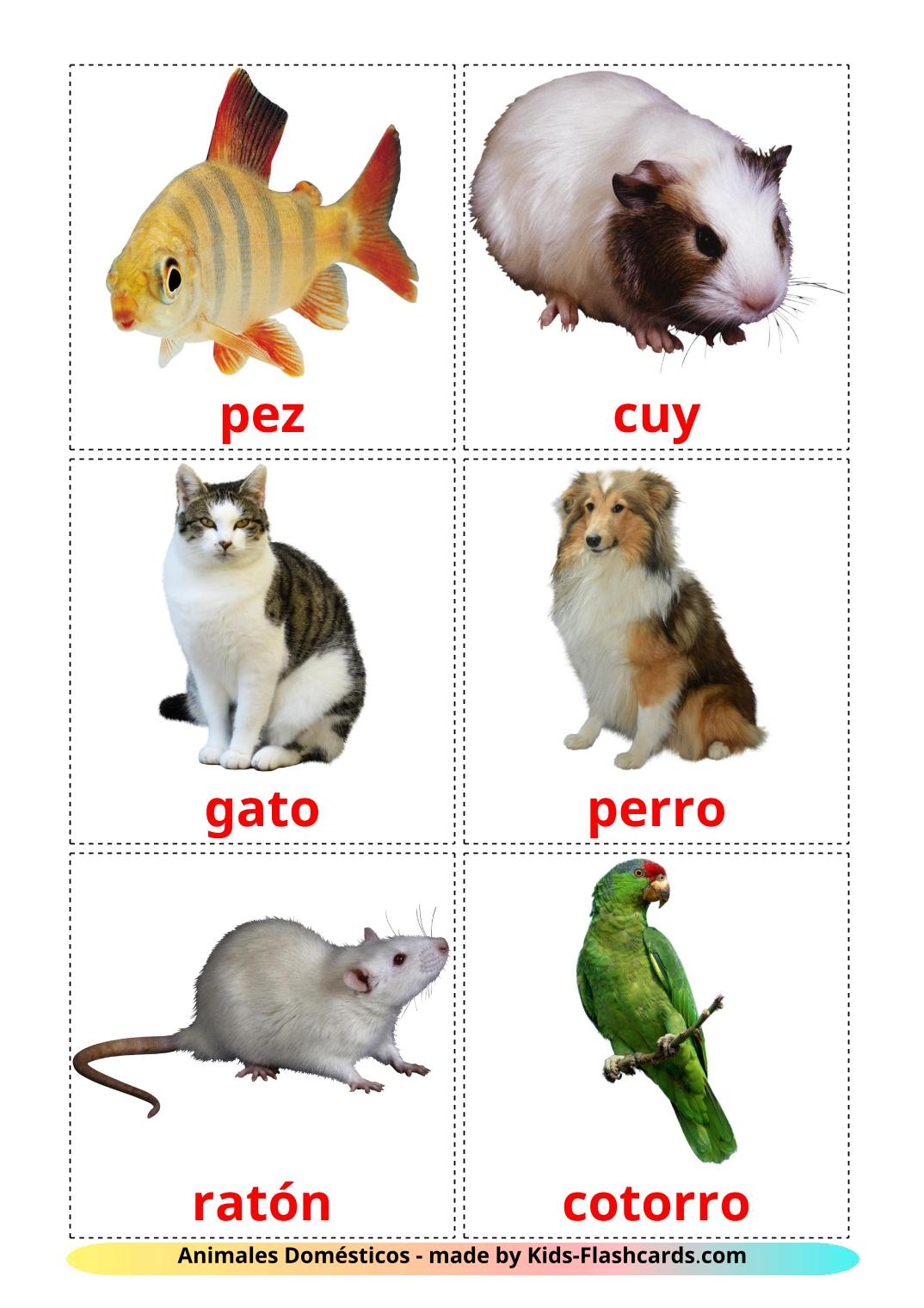 Domestic animals - 10 Free Printable spanish Flashcards