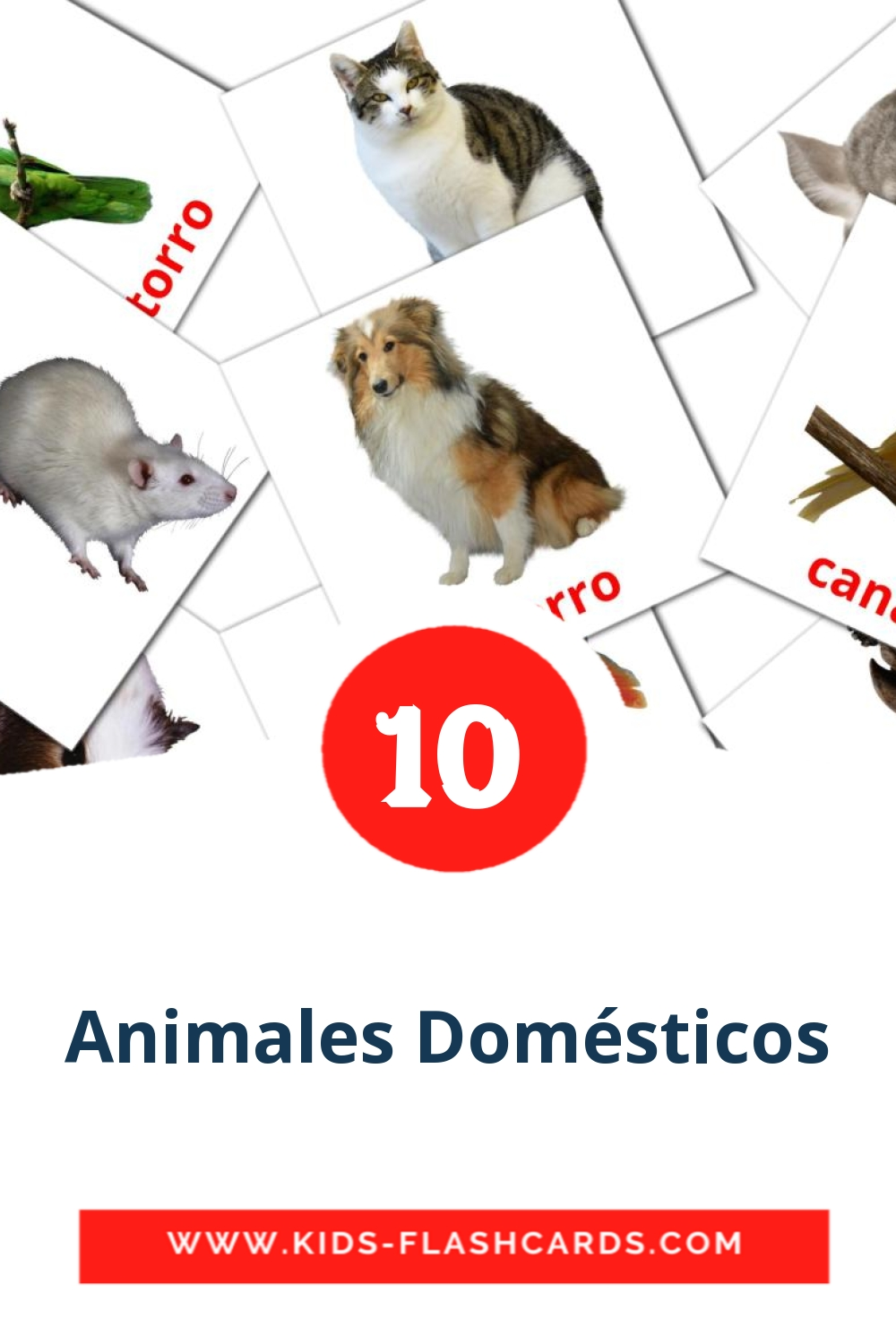 10 Animales Domésticos  Picture Cards for Kindergarden in spanish