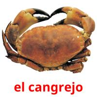 el cangrejo picture flashcards