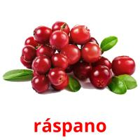 ráspano picture flashcards