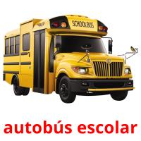 autobús escolar picture flashcards