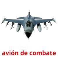 avión de combate picture flashcards