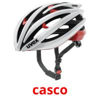 casco picture flashcards