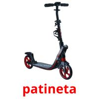 patineta picture flashcards