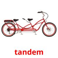 tandem picture flashcards