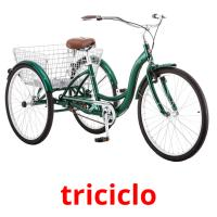 triciclo picture flashcards