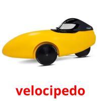 velocipedo picture flashcards