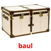 baul picture flashcards