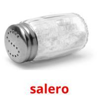 salero picture flashcards