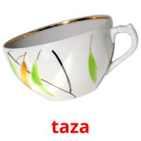 taza picture flashcards