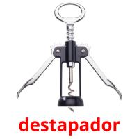 destapador picture flashcards