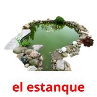 el estanque picture flashcards