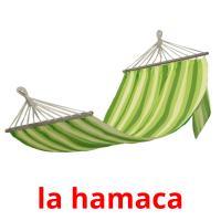 la hamaca picture flashcards
